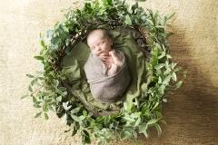 Organic Baby Photos